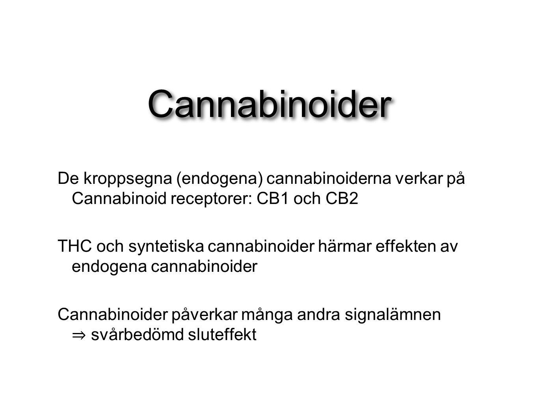 Cannabinoider De kroppsegna (endogena) cannabinoiderna verkar på Cannabinoid receptorer: CB1 och CB2.
