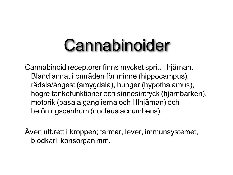 Cannabinoider