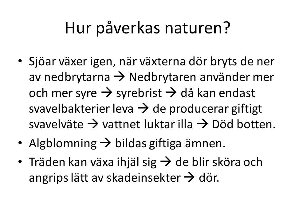 Hur påverkas naturen