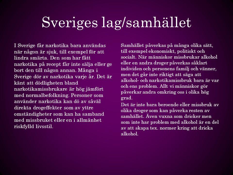 Sveriges lag/samhället