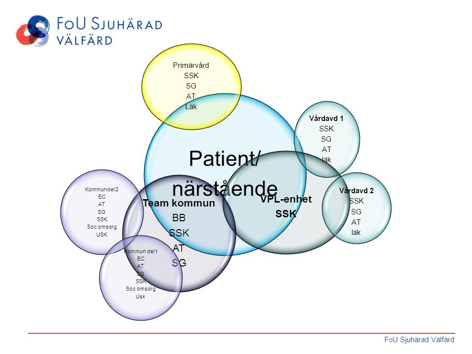 Patient/ närstående VPL-enhet Team kommun BB Primärvård SSK SG AT Läk