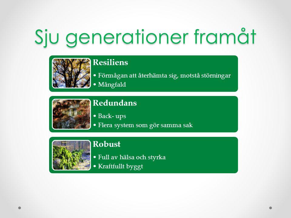 Sju generationer framåt