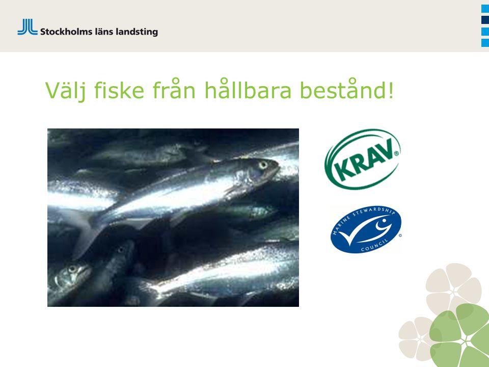 Välj fiske från hållbara bestånd!