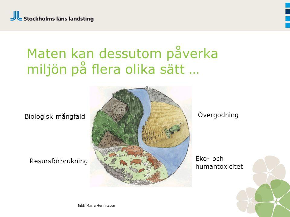 Maten kan dessutom påverka miljön på flera olika sätt …