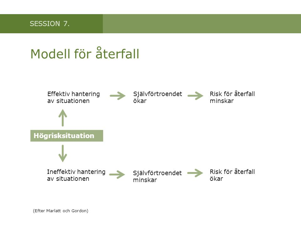 Modell för återfall Högrisksituation Effektiv hantering av situationen