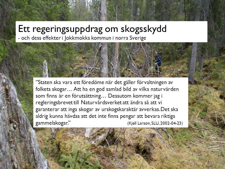 Ett regeringsuppdrag om skogsskydd