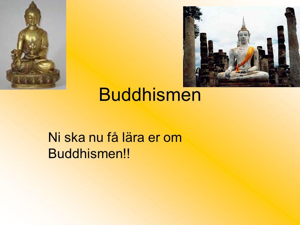 Ni ska nu få lära er om Buddhismen!!