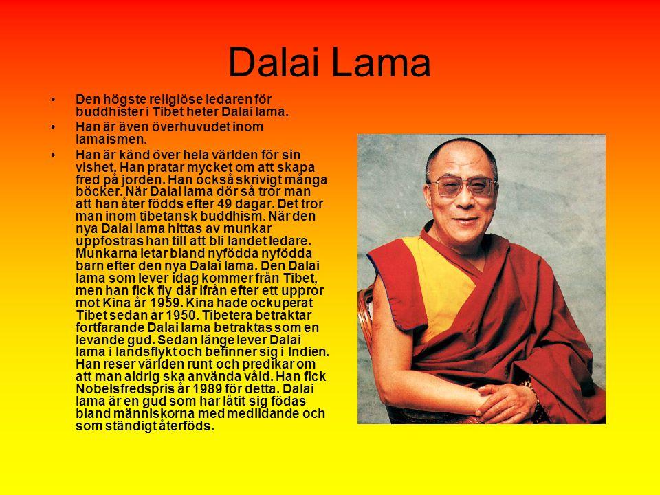 Dalai Lama Den högste religiöse ledaren för buddhister i Tibet heter Dalai lama. Han är även överhuvudet inom lamaismen.
