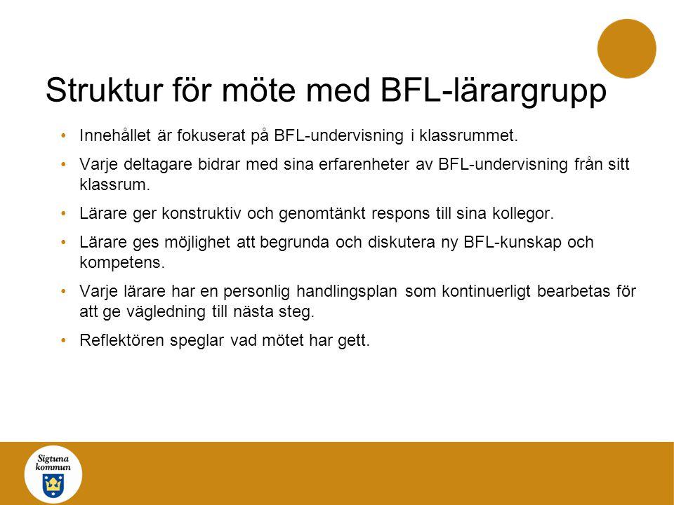 Struktur för möte med BFL-lärargrupp