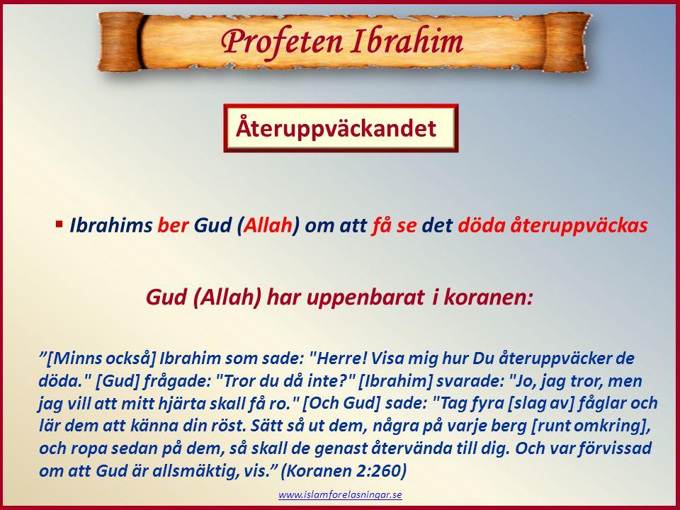 Profeten Ibrahim Återuppväckandet