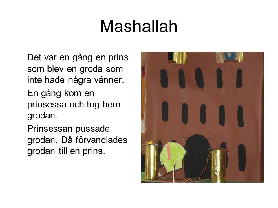 Mashallah Det var en gång en prins som blev en groda som inte hade några vänner. En gång kom en prinsessa och tog hem grodan.