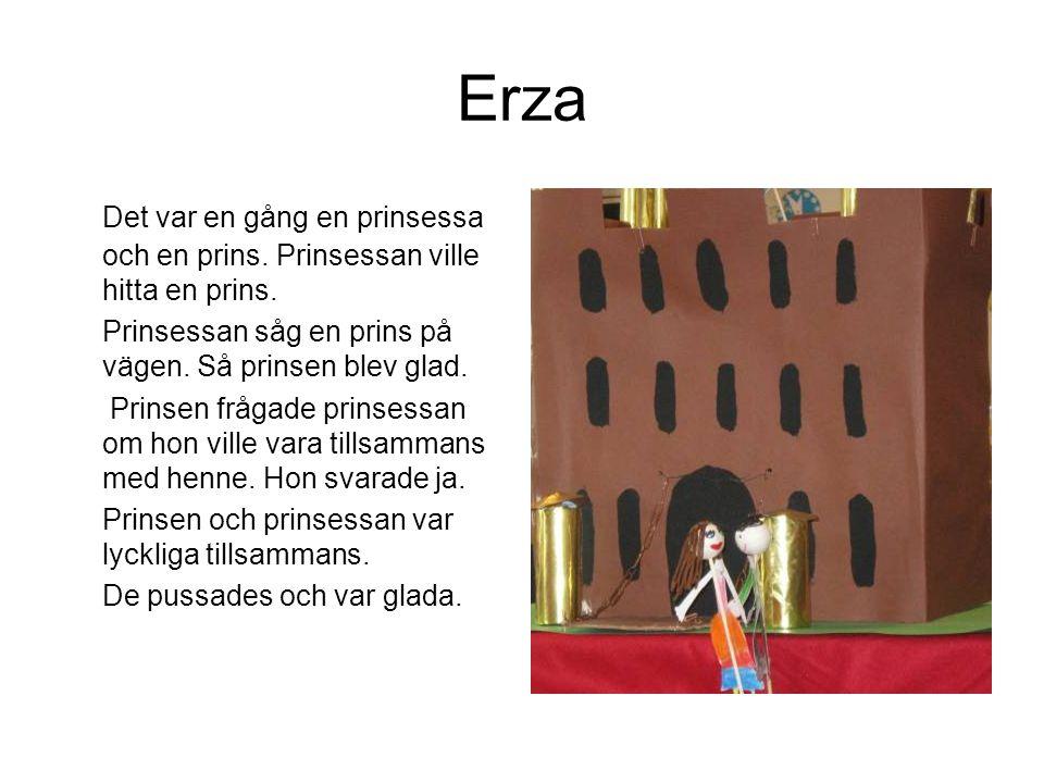 Erza Det var en gång en prinsessa och en prins. Prinsessan ville hitta en prins. Prinsessan såg en prins på vägen. Så prinsen blev glad.