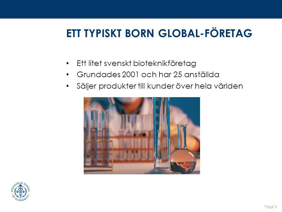 ETT TYPISKT BORN GLOBAL-FÖRETAG
