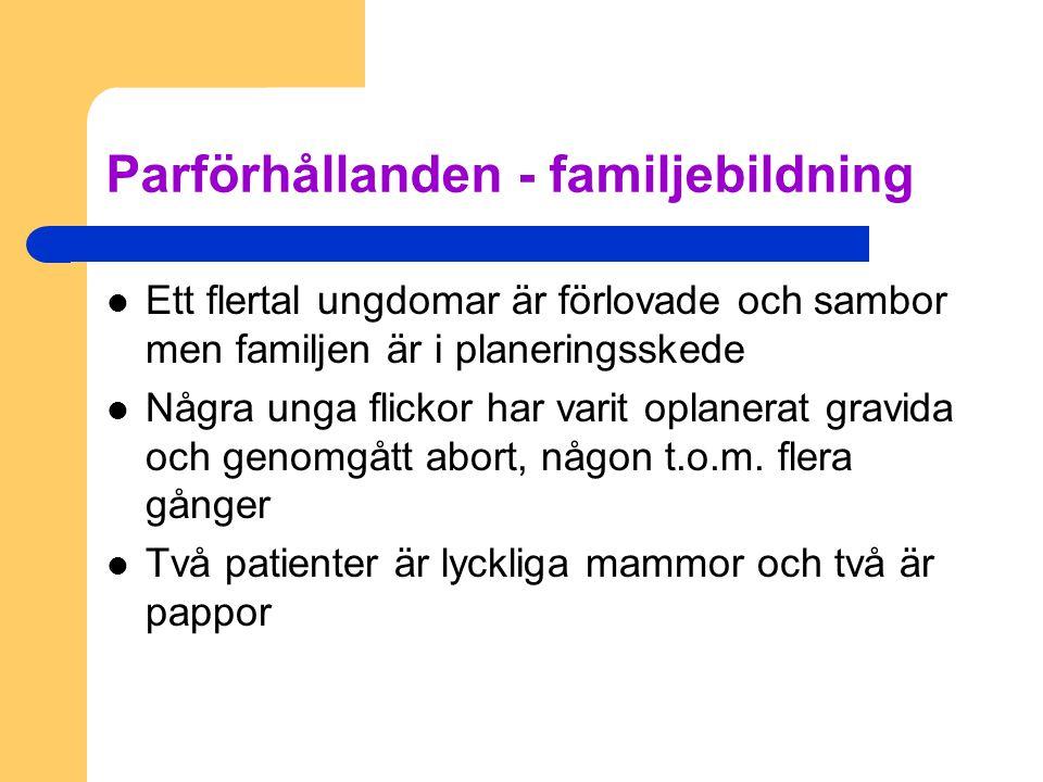 Parförhållanden - familjebildning