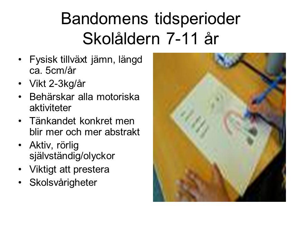 Bandomens tidsperioder Skolåldern 7-11 år