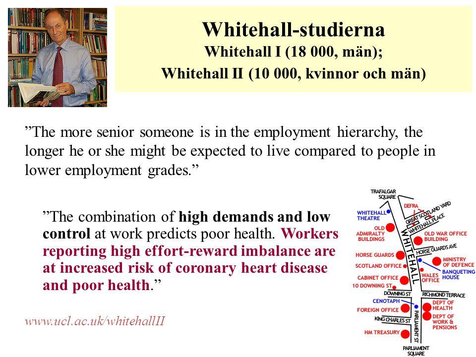Whitehall-studierna Whitehall I (18 000, män); Whitehall II (10 000, kvinnor och män)