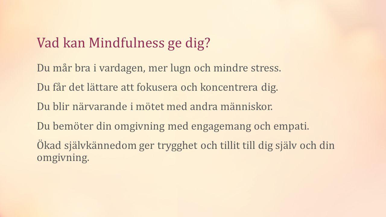 Vad kan Mindfulness ge dig