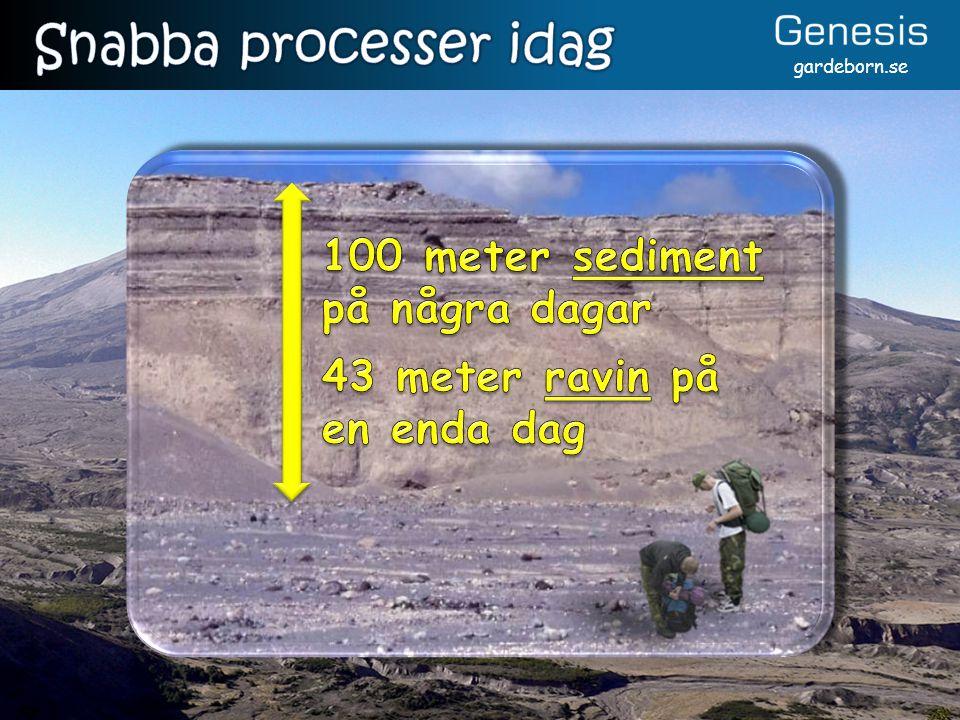 Snabba processer idag 100 meter sediment på några dagar