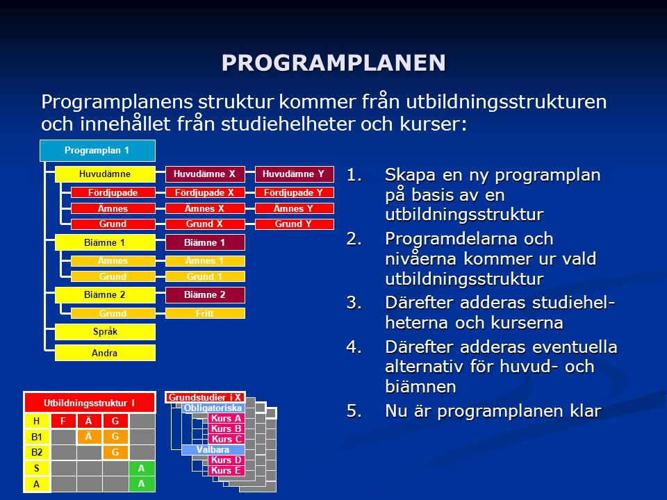Utbildningsstruktur I
