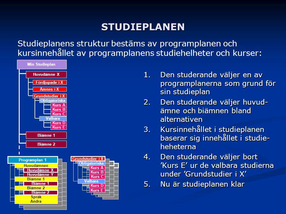 STUDIEPLANEN Studieplanens struktur bestäms av programplanen och kursinnehållet av programplanens studiehelheter och kurser: