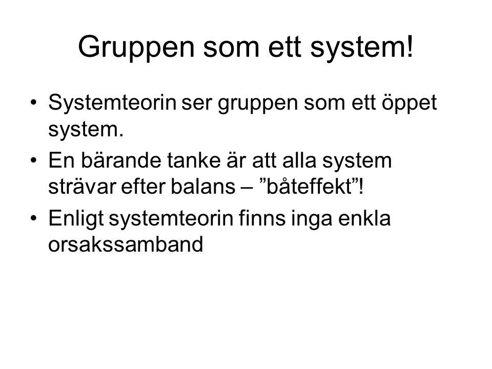 Gruppen som ett system! Systemteorin ser gruppen som ett öppet system.