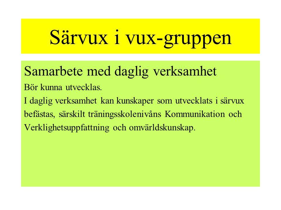 Särvux i vux-gruppen Samarbete med daglig verksamhet