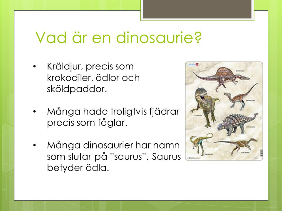 Vad är en dinosaurie Kräldjur, precis som krokodiler, ödlor och sköldpaddor. Många hade troligtvis fjädrar precis som fåglar.