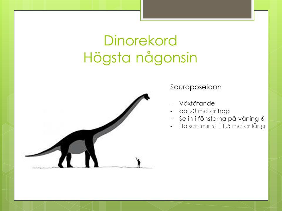 Dinorekord Högsta någonsin