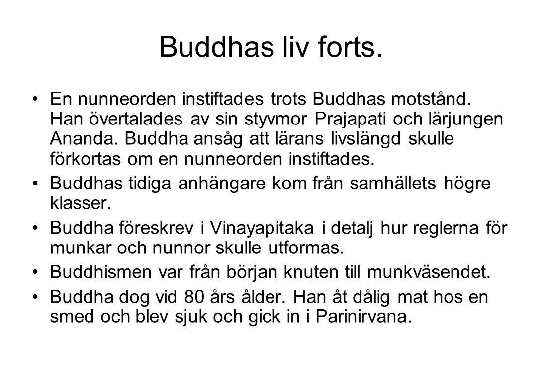 Buddhas liv forts.