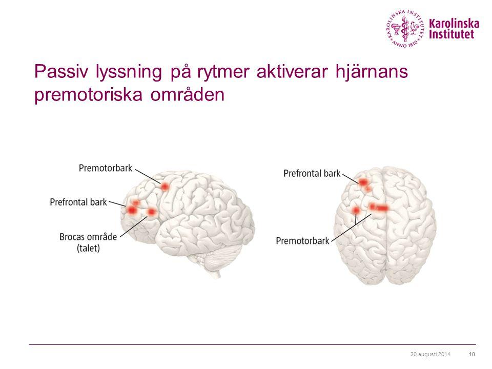 Passiv lyssning på rytmer aktiverar hjärnans premotoriska områden