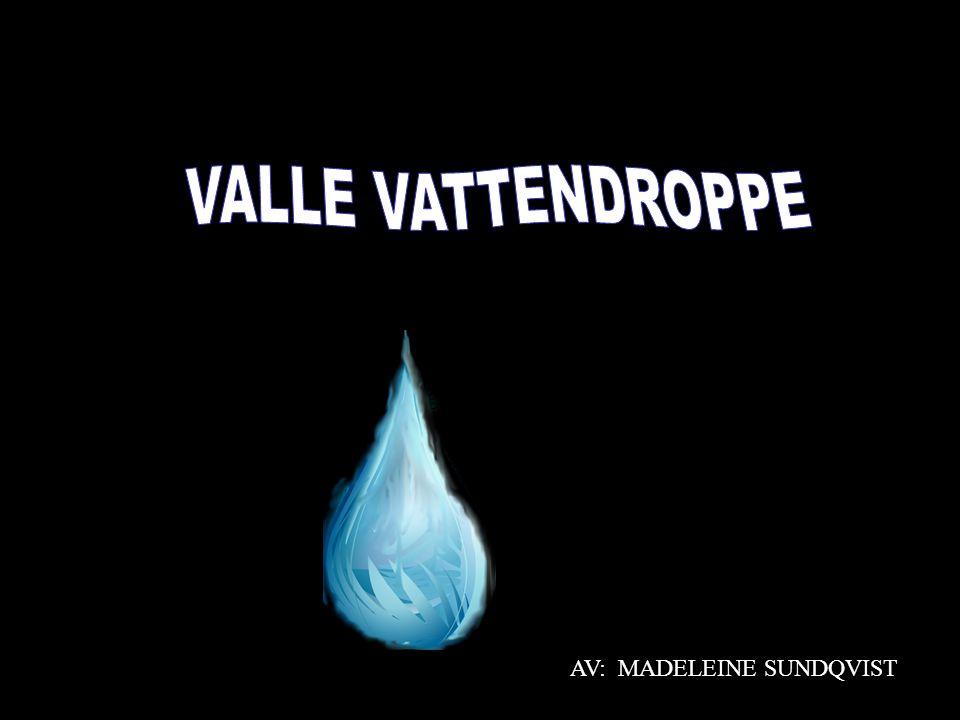 VALLE VATTENDROPPE AV: MADELEINE SUNDQVIST