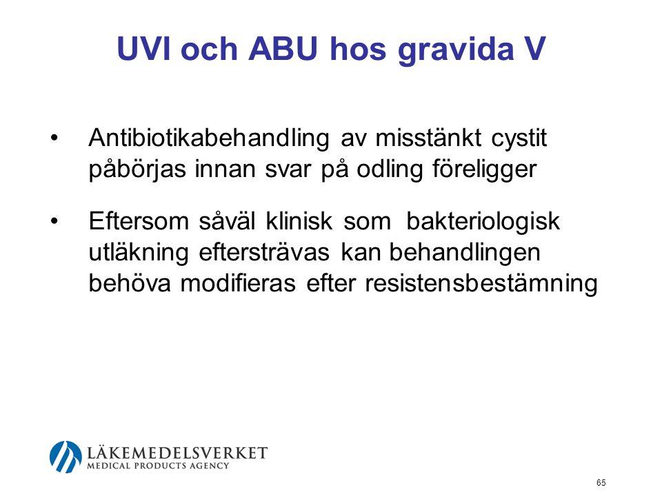 UVI och ABU hos gravida V