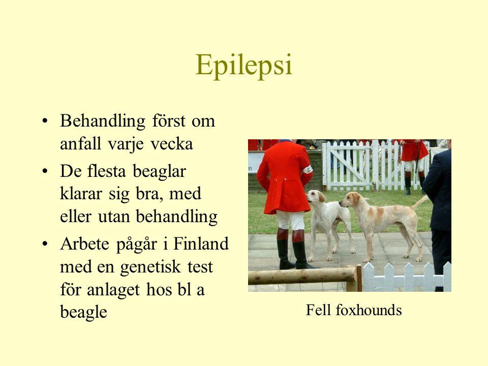 Epilepsi Behandling först om anfall varje vecka