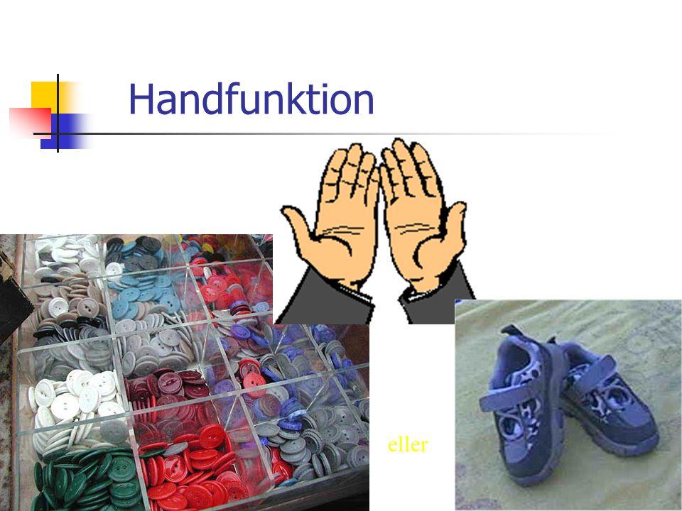 Handfunktion eller