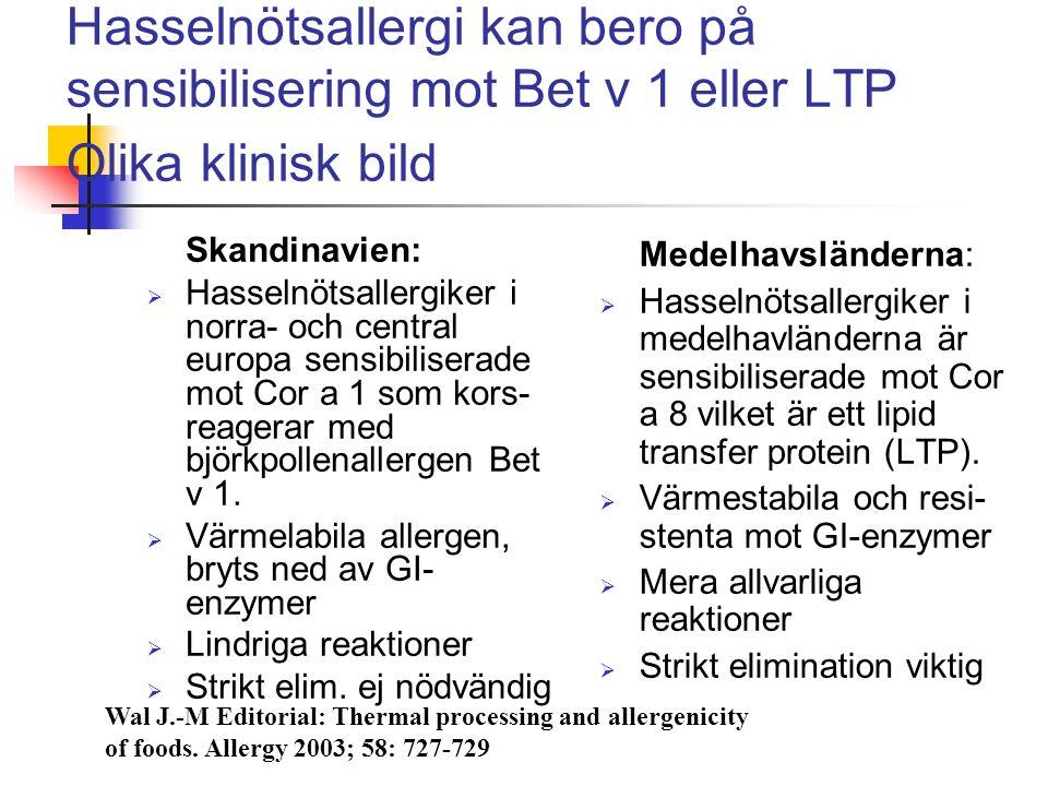 Hasselnötsallergi kan bero på sensibilisering mot Bet v 1 eller LTP Olika klinisk bild