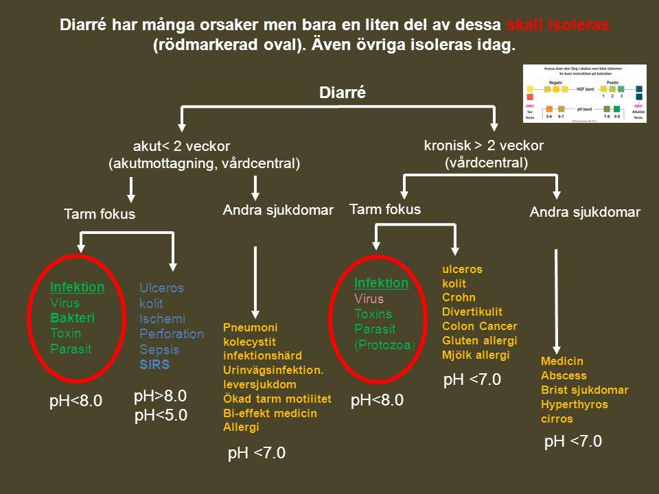Diarré har många orsaker men bara en liten del av dessa skall isoleras (rödmarkerad oval). Även övriga isoleras idag.