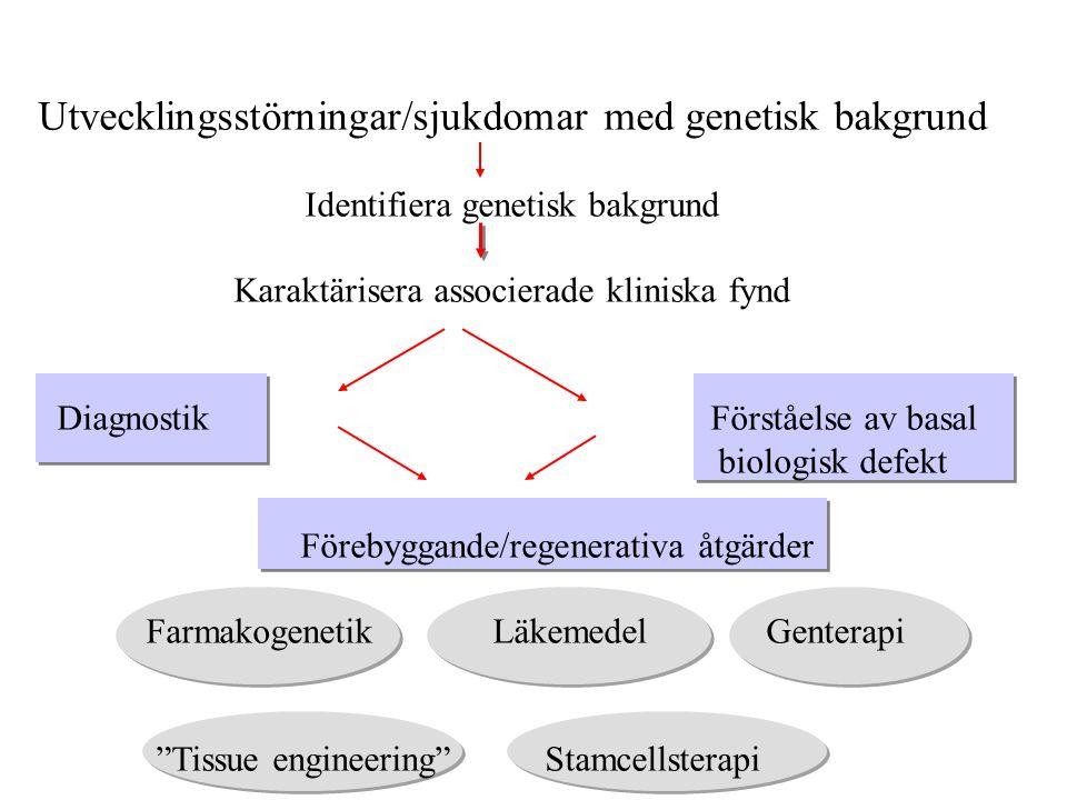 Utvecklingsstörningar/sjukdomar med genetisk bakgrund
