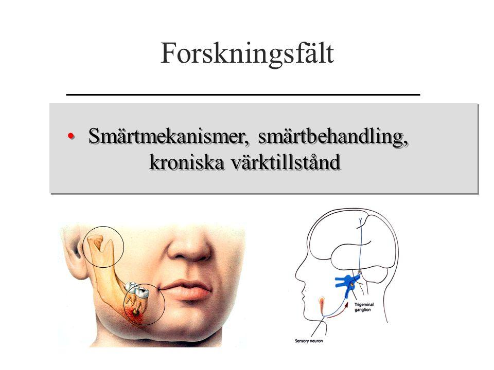 Forskningsfält Smärtmekanismer, smärtbehandling, kroniska värktillstånd