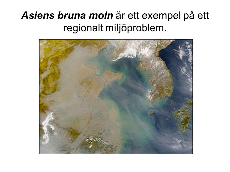 Asiens bruna moln är ett exempel på ett regionalt miljöproblem.