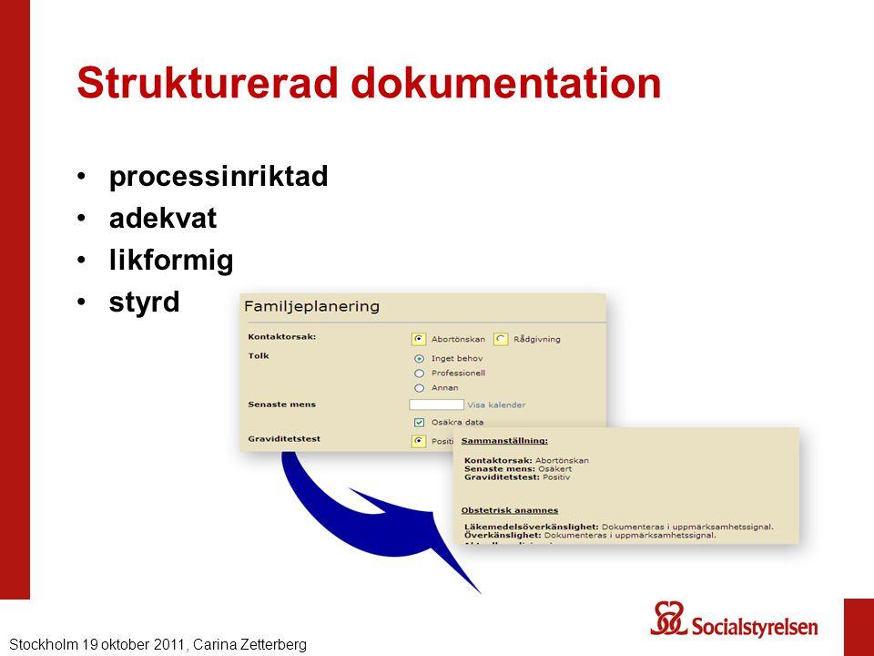 Strukturerad dokumentation
