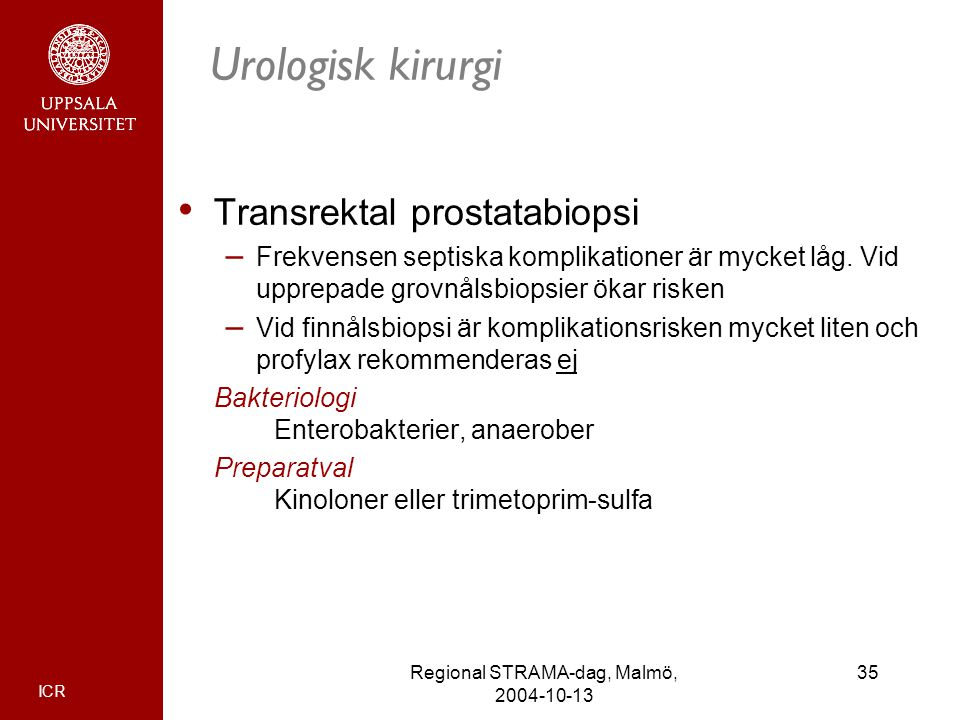 Regional STRAMA-dag, Malmö, 2004-10-13