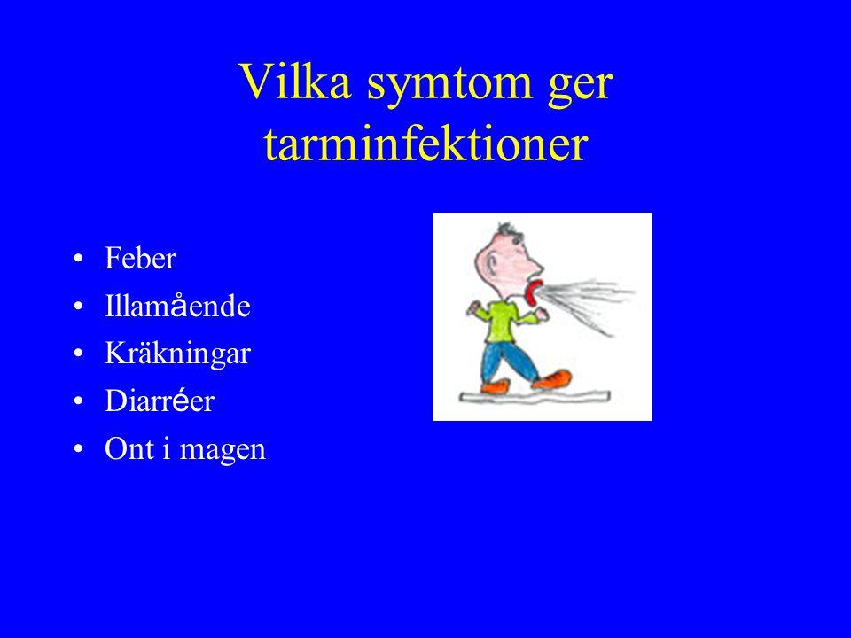 Vilka symtom ger tarminfektioner