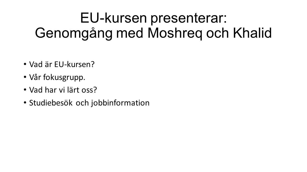 EU-kursen presenterar: Genomgång med Moshreq och Khalid