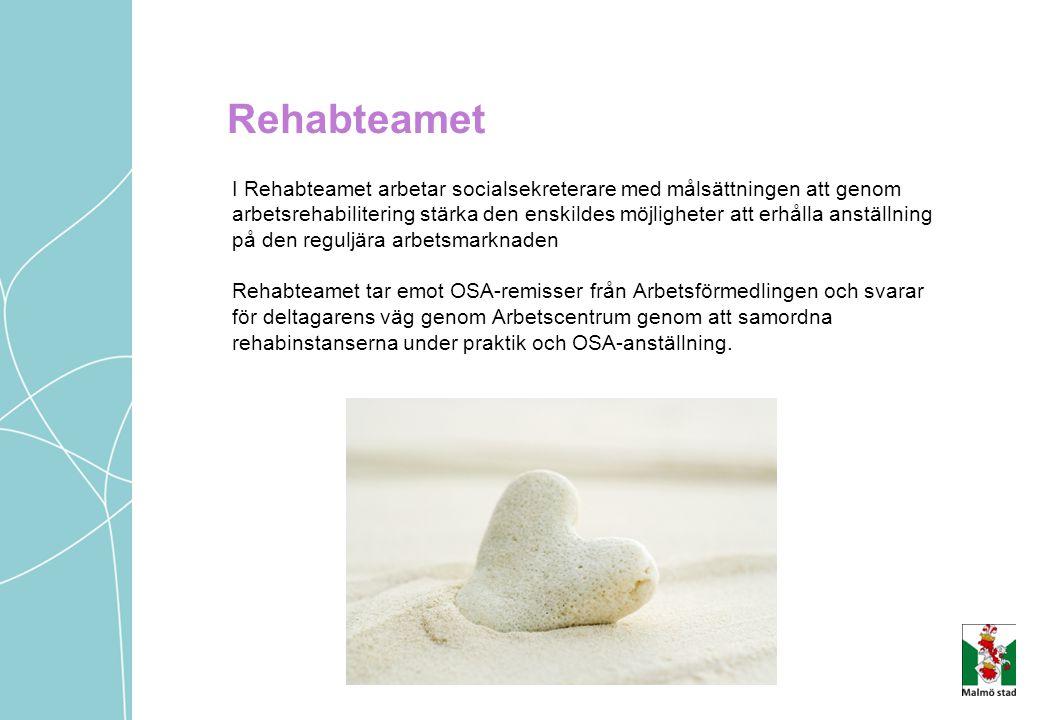 Rehabteamet