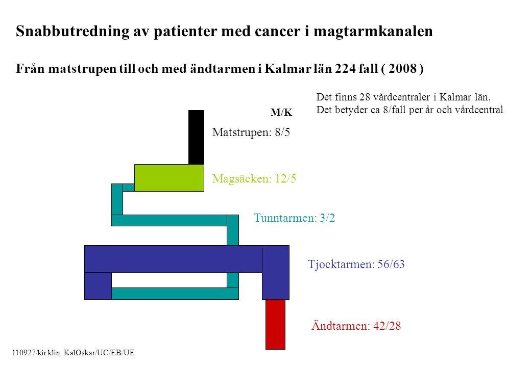 Snabbutredning av patienter med cancer i magtarmkanalen