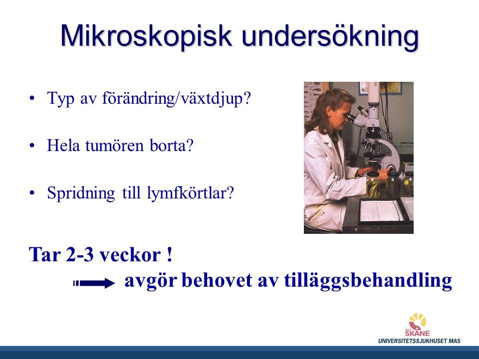 Mikroskopisk undersökning