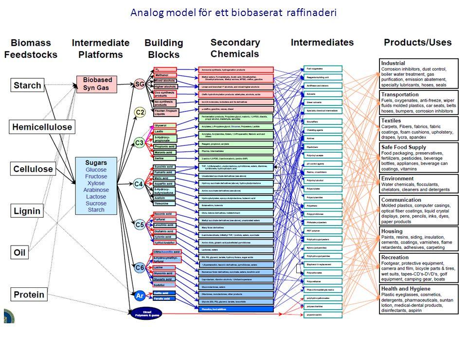 Analog model för ett biobaserat raffinaderi