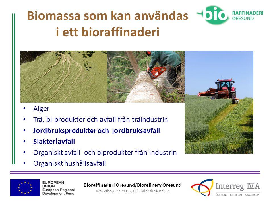 Biomassa som kan användas i ett bioraffinaderi