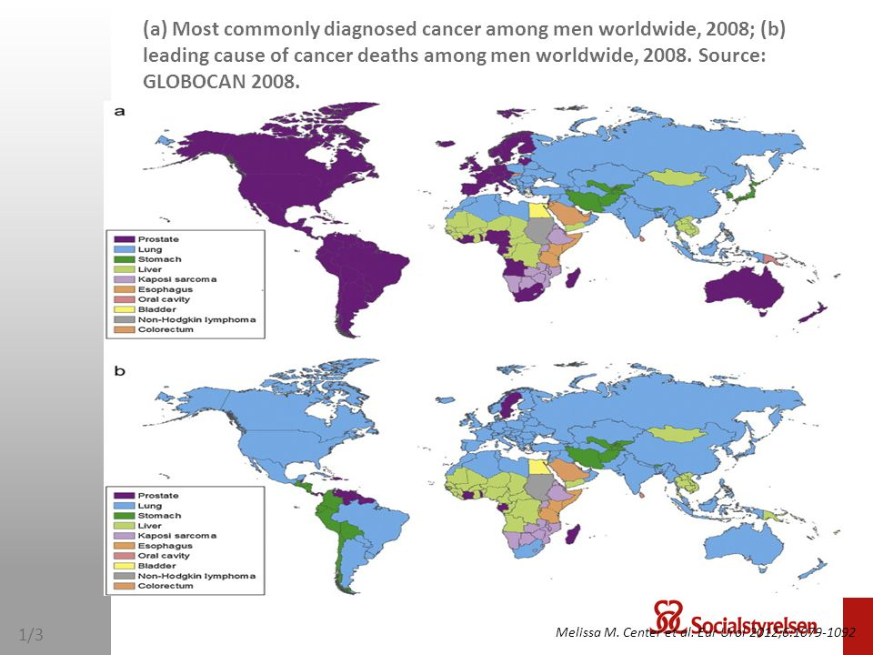 (a) Most commonly diagnosed cancer among men worldwide, 2008; (b) leading cause of cancer deaths among men worldwide, 2008. Source: GLOBOCAN 2008.
