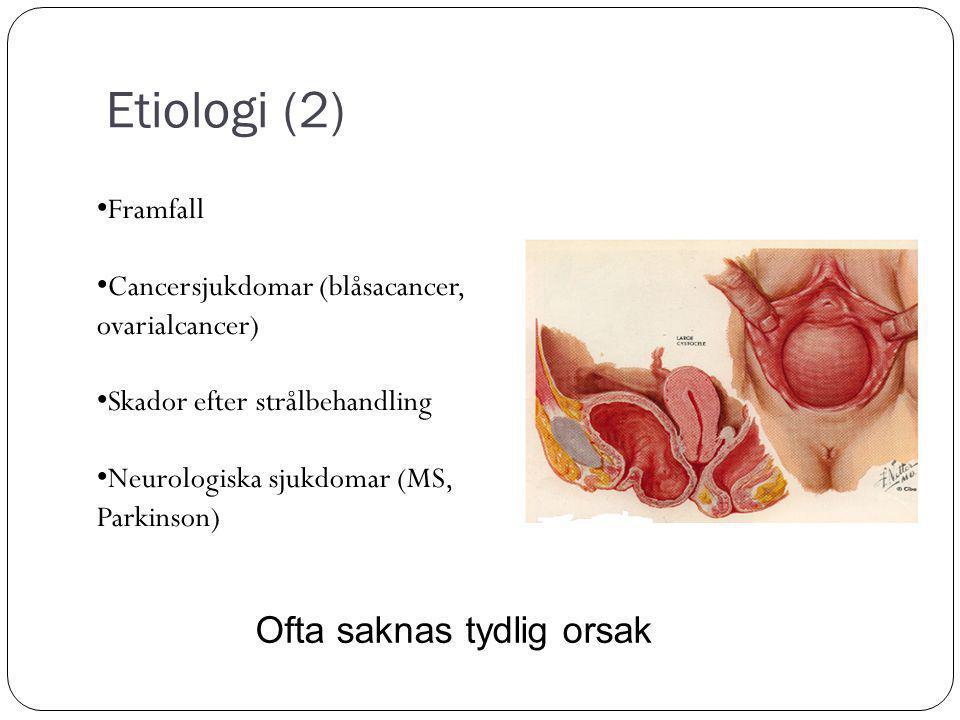 Etiologi (2) Ofta saknas tydlig orsak Framfall